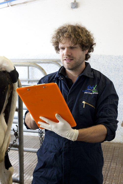 Brendan John MRCVS in action on farm